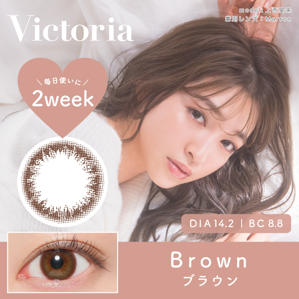 Victoria 2week  by candymagic 《BROWN》 ブラウン 度あり/度なし 1箱6枚入り【ネコポス対象品】