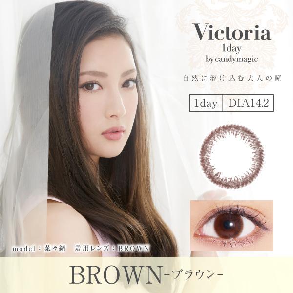 Vitoria 1day ブラウン